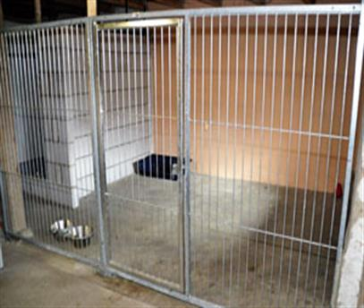 One of our kennels